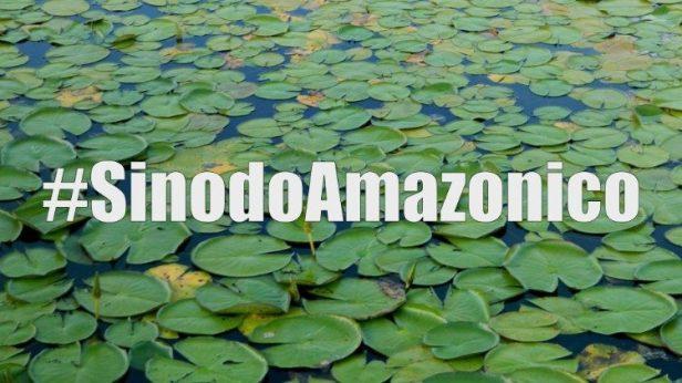 Sinodo amazonico