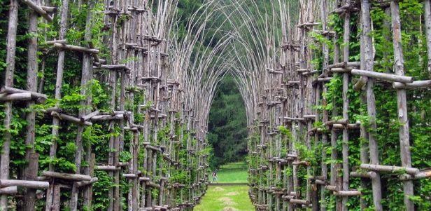 Giuliano Mauri, Cattedrale vegetale, Arte Sella, Borgo Valsugana (TN)