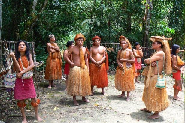 AMERICA Amazzonia