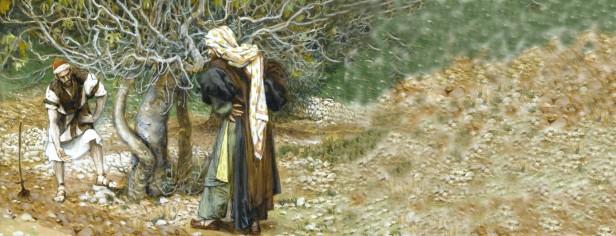 Luca 13,1-9.jpg