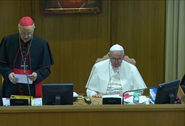 La relazione del cardinale Baldisseri